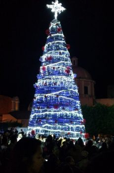 Tequis Christmas Tree Lighting